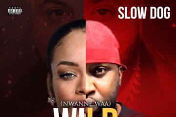 SlowDog – Nwanne Waa (Wild Thoughts Cover) | prod. Regiz