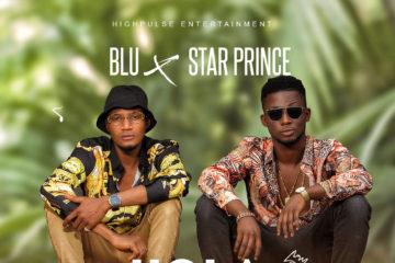 Blu x Star Prince – Kola-Nut