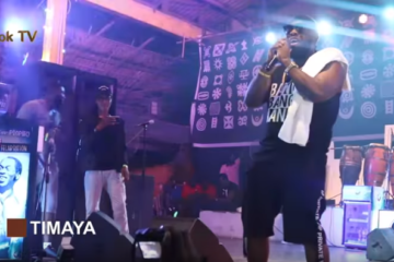 NotjustOk TV: Timaya, Reekado Banks, Ice Prince, Dr. SiD + More | Felabration 2017 [Day 5 Highlights]