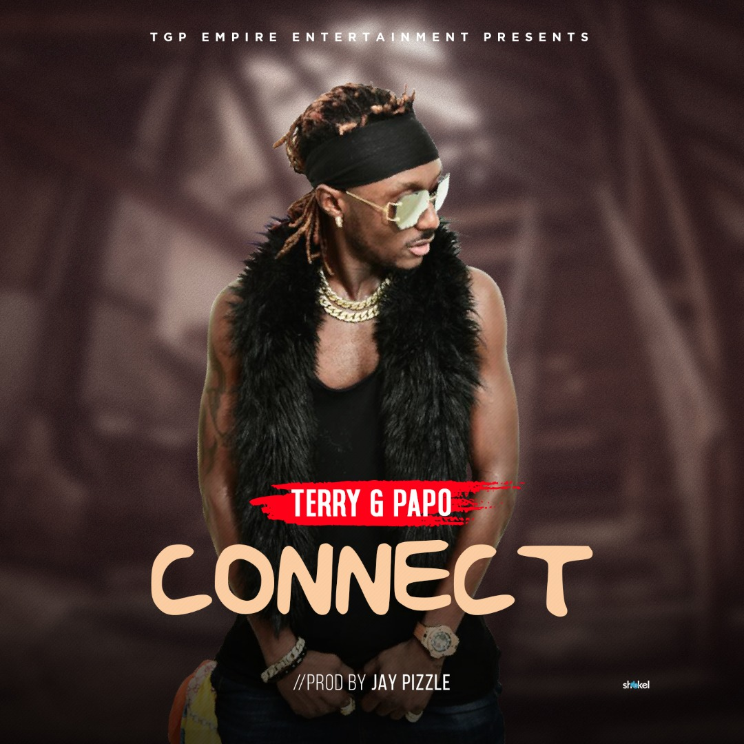 Terry G Papo - Connect