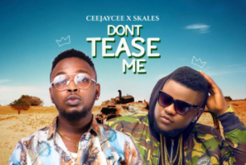 VIDEO: CeeJayCee – Don't Tease Me (Remix) Ft. Skales