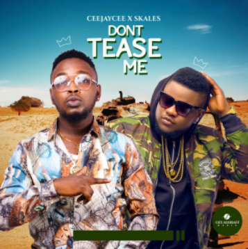 VIDEO/AUDIO: CeeJayCee – Don't Tease Me (Remix) Ft. Skales