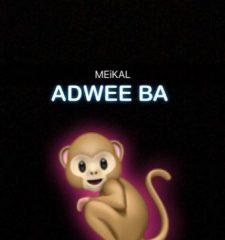 Medikal – Adwee Ba (Prod. Halm)