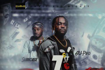 Au-Pro – 1st ft Slimcase