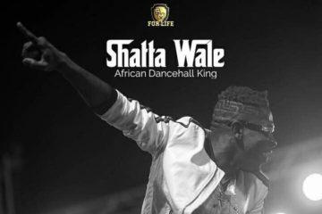 Shatta Wale – Performer