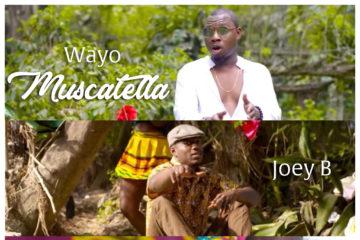 VIDEO: Wayo – Muscatella ft. Joey B