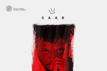 Saab – Adanma