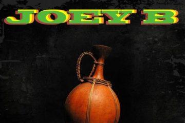 Joey B – NSA