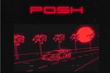 Mayorkun – Posh + Fantasy