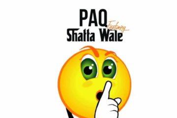 Paq ft. Shatta Wale – Y3koom