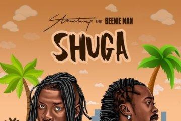 Stonebwoy ft. Bennie Man - Shuga