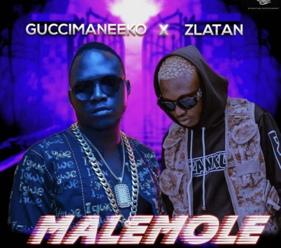 Guccimaneeko ft. Zlatan - Malemole