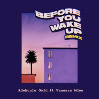 Adekunle Gold - Before You Wake Up (Remix) ft. Vanessa Mdee