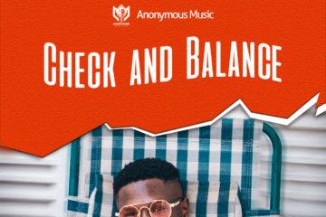 Timz - Check And Balance