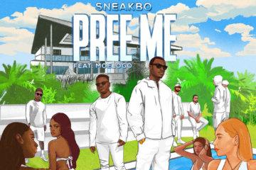 Sneakbo ft. Moelogo - Pree Me