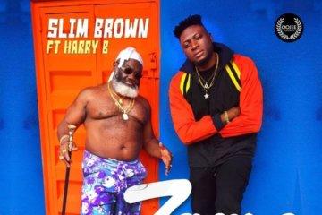Slim Brown - Zamo ft. Harry B