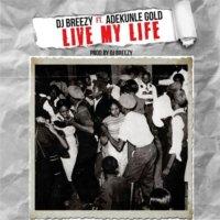 DJ Breezy ft. Adekunle Gold – Live My Life