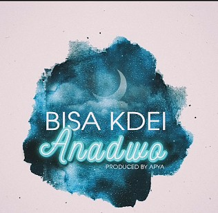 Bisa Kdei - Anadwo - Download Mp3