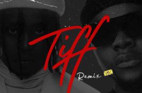 Demmie Vee - Tiff (Remix) ft. Kizz Daniel
