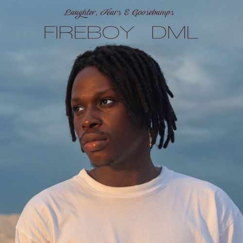 Fireboy DML's 'Laughter, Tears & Goosebumps' Finds Success In Its Emotional Strength | Album Review