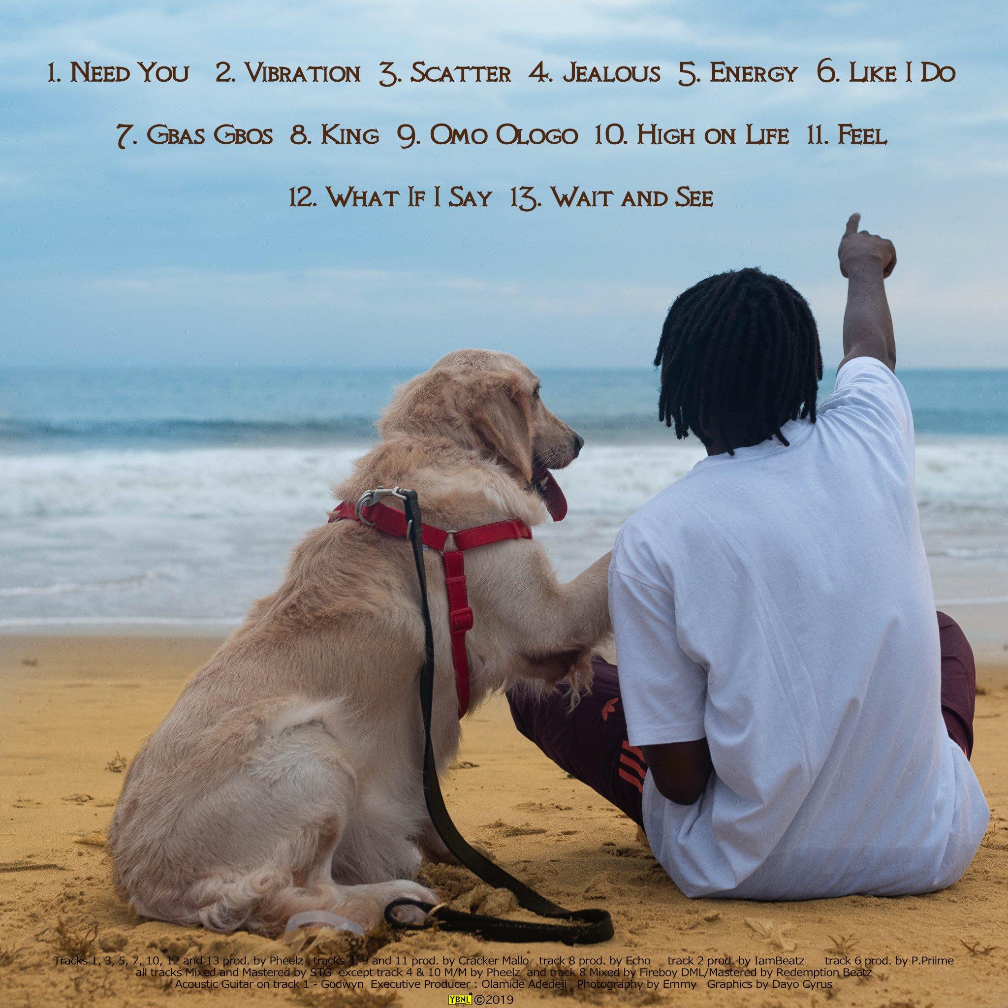 """Laughter, Tears & Goosebumps"" Album Tracklist"