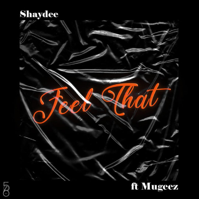 Shaydee ft. Mugeez - Feel That