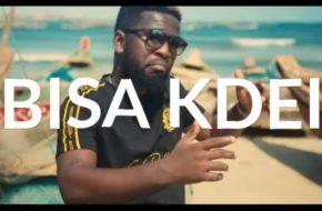 VIDEO: Bisa Kdei - Anadwo