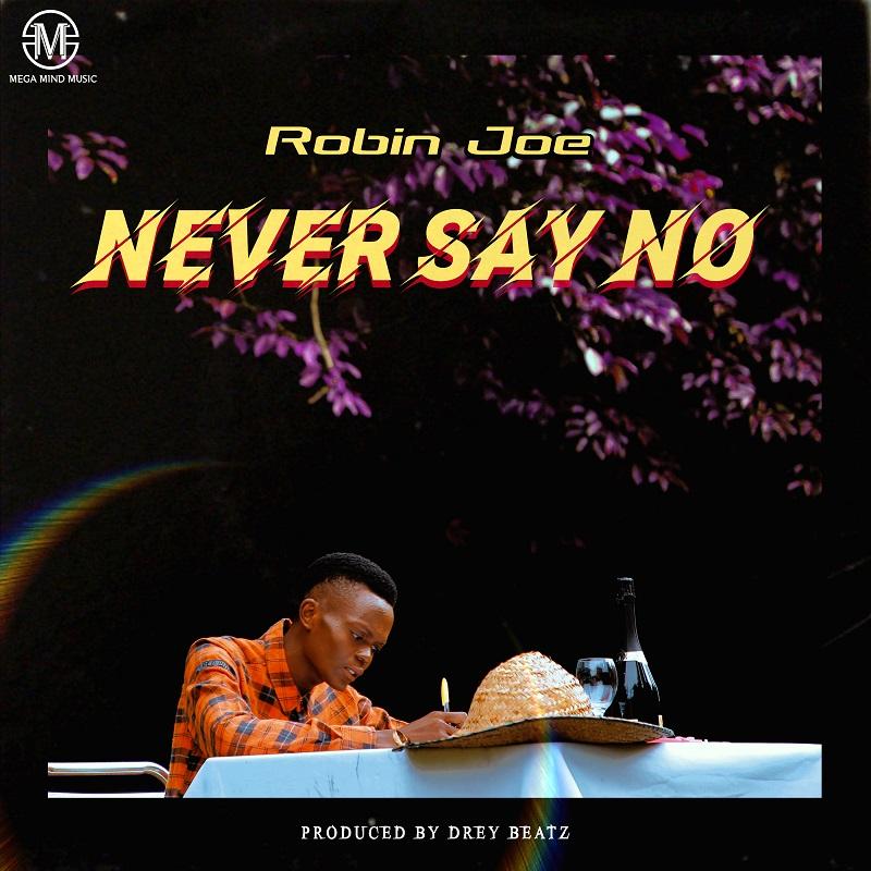 Robin Joe - Never Say No