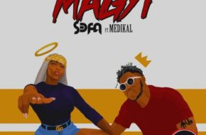 Sefa ft. Medikal - Magyi