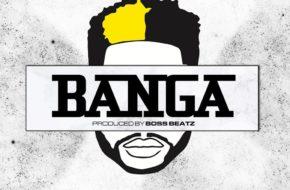 DJ Ecool - Banga