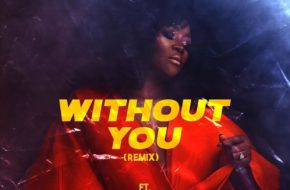 DJ Tunez ft. Omawumi - Without You (Remix)