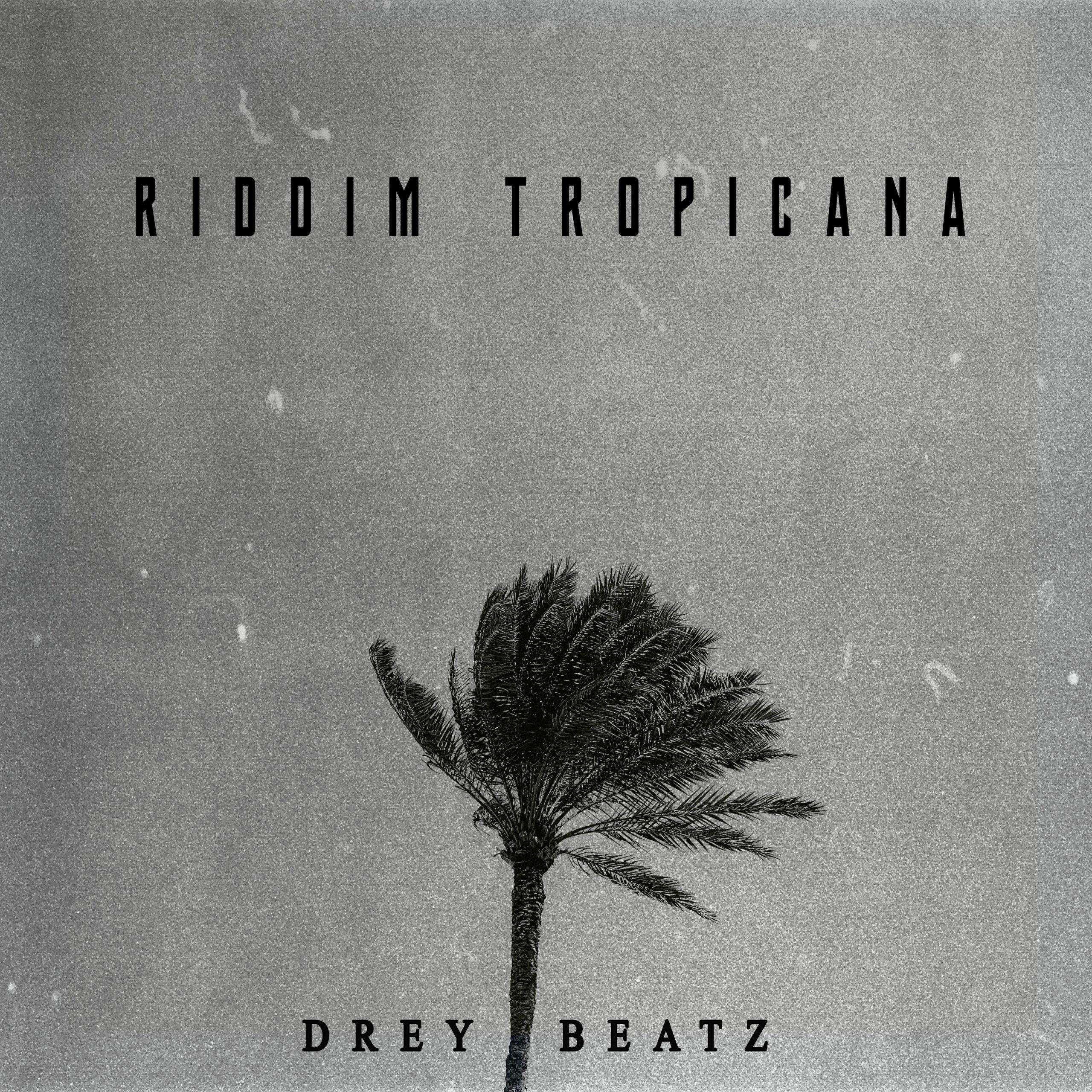 Drey Beatz - Riddim Tropicana