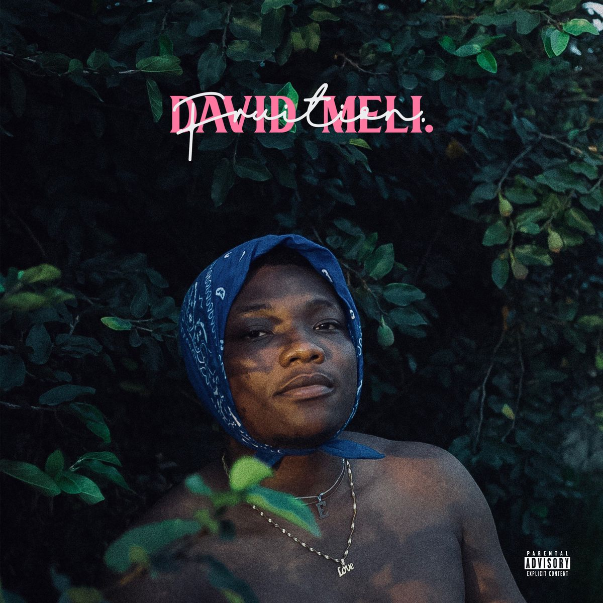 David Meli - Wande Coal - Akon & Wizkid: Best New Music