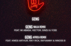 Mayorkun - Geng (Africa Remix) ft. Kwesi Arthur, Riky Rick, Rayvanny & Innoss B