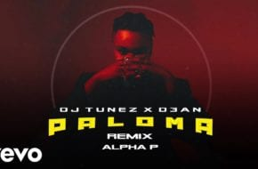 Alpha P, DJ Tunez & D3AN - Paloma (Remix)