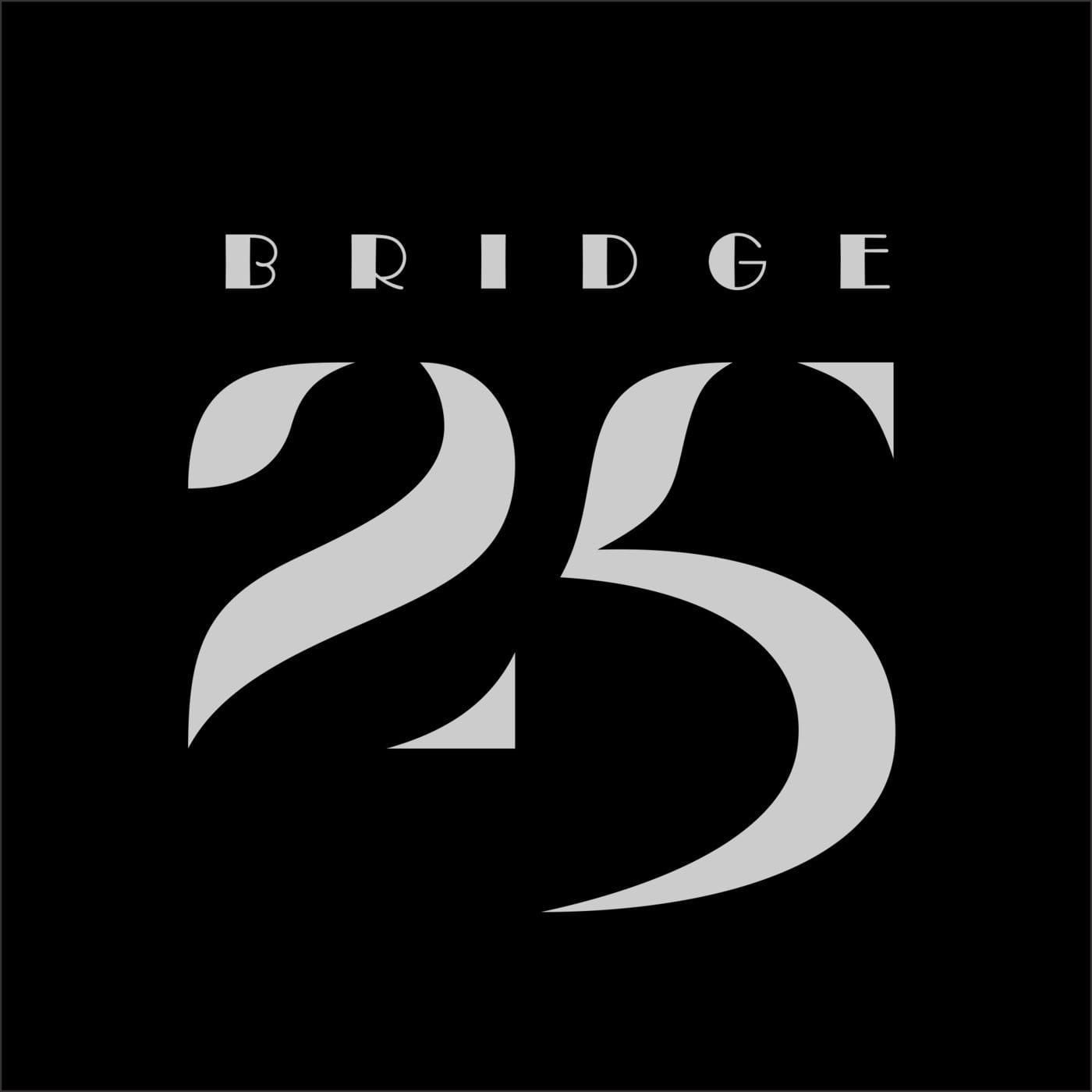 Bridge - 25