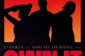 Stormzy - Own It (Remix) ft. Burna Boy & Sho Madjozi