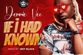 Demmie Vee - If I Had Known