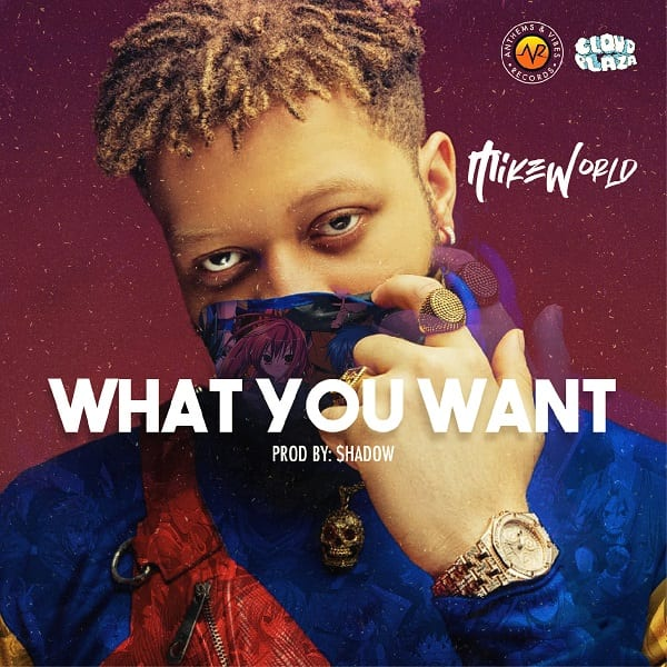 Mike World – What You Want