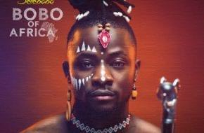Selebobo - Bobo of Africa