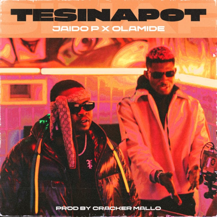 Cover Artwork for Tesinapot