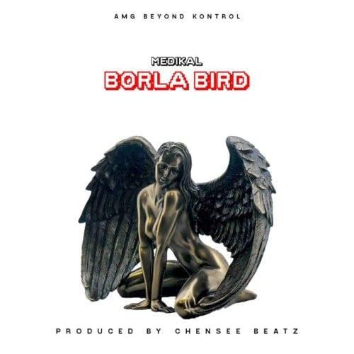 "Medikal Drops His Brand New Single ""Borla Bird"""