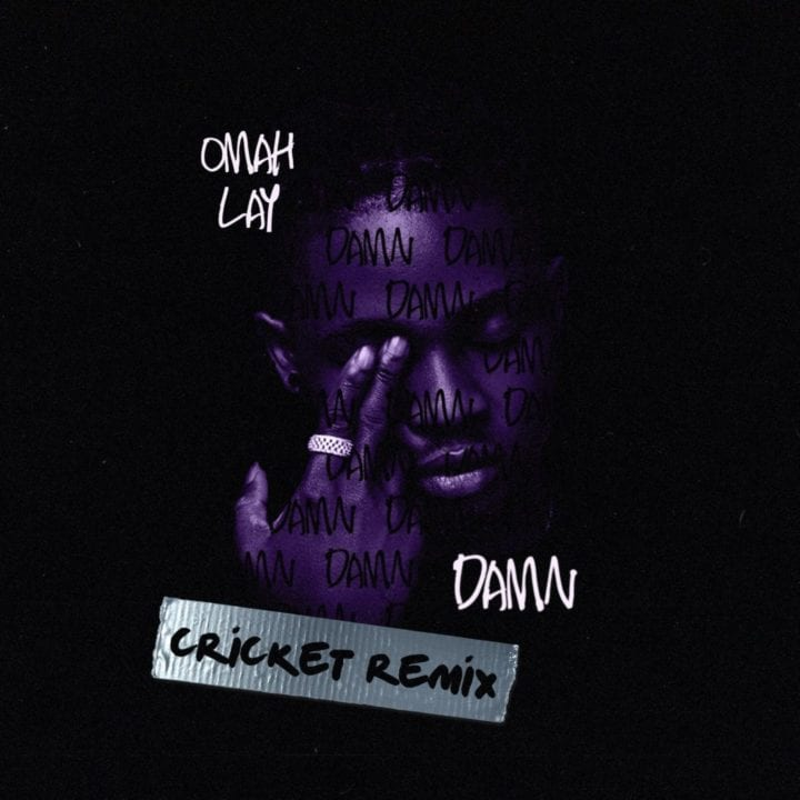 Omah Lay - Damn Cricket Remix