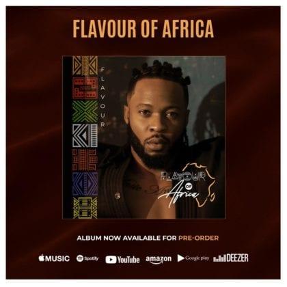 Flavour of Africa (Album)