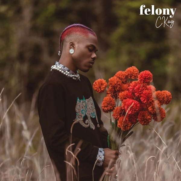 Correct Felony Lyrics by CKay | Read here
