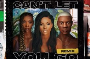 Stefflon Don, Rema, Tiwa Savage - Can't Let You Go (Remix)