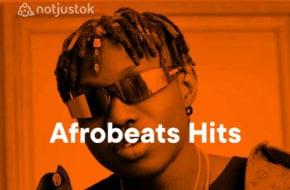 Best New Music. Zlatan Lagos Anthem Remix. Ruger Pandemic. Laycon Wagwan.