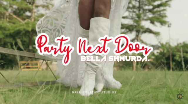 Bella Shmurda Party Next Door Video