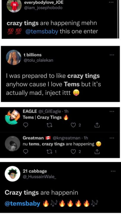 Tems Crazy Tings Song