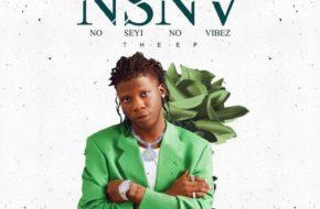 Seyi Vibez - NSNV EP